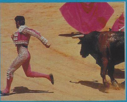 torero 2